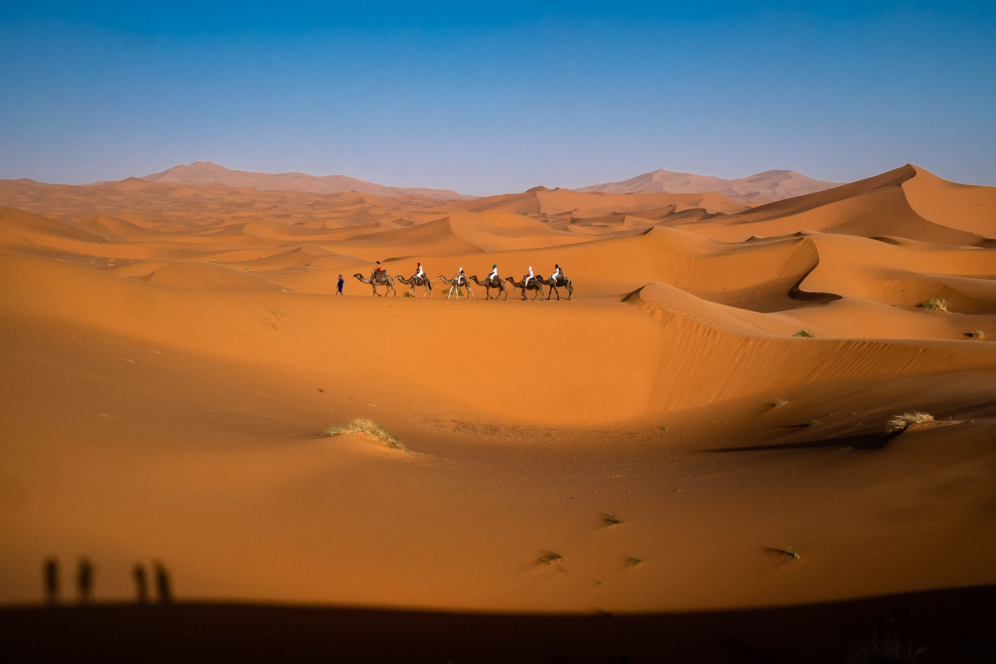 Caravan (Sahara)